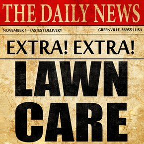 The Daily News Lawn Care